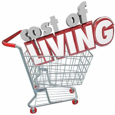 Cost of Living in shopping cart cs26117197