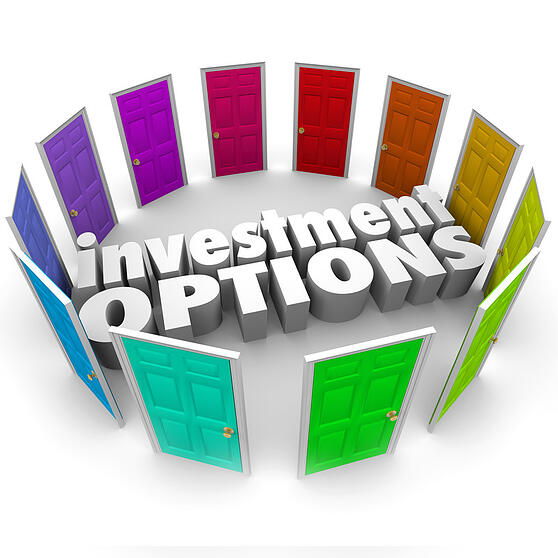 Investment Options cs1.20